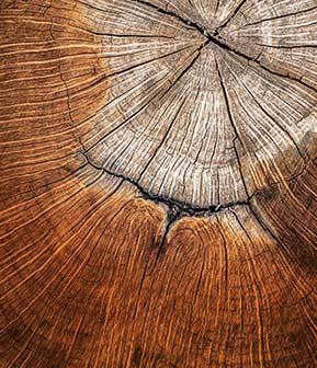 Nátěrové hmoty na dřevo